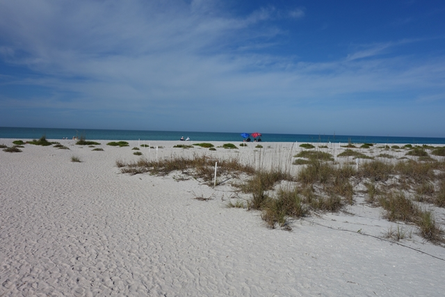 Boca Grande Beach on Gasparilla Island