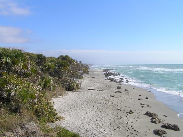 Venice Beach - Caspersen Beach
