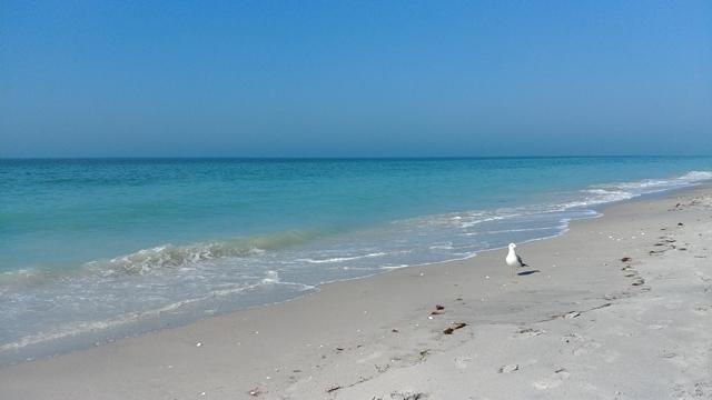 Private Beach South Venice