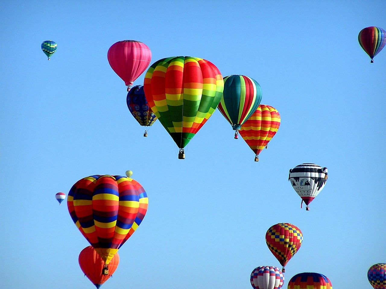 Balloon Festival Sarasota