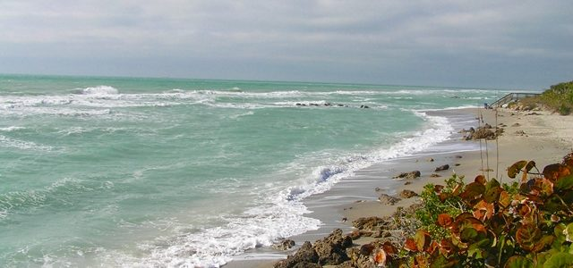 Caspersen Beach Venice